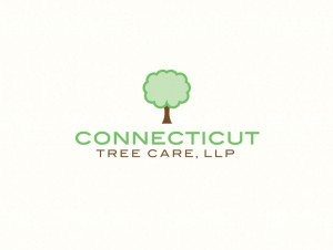 Connecticut Tree Care